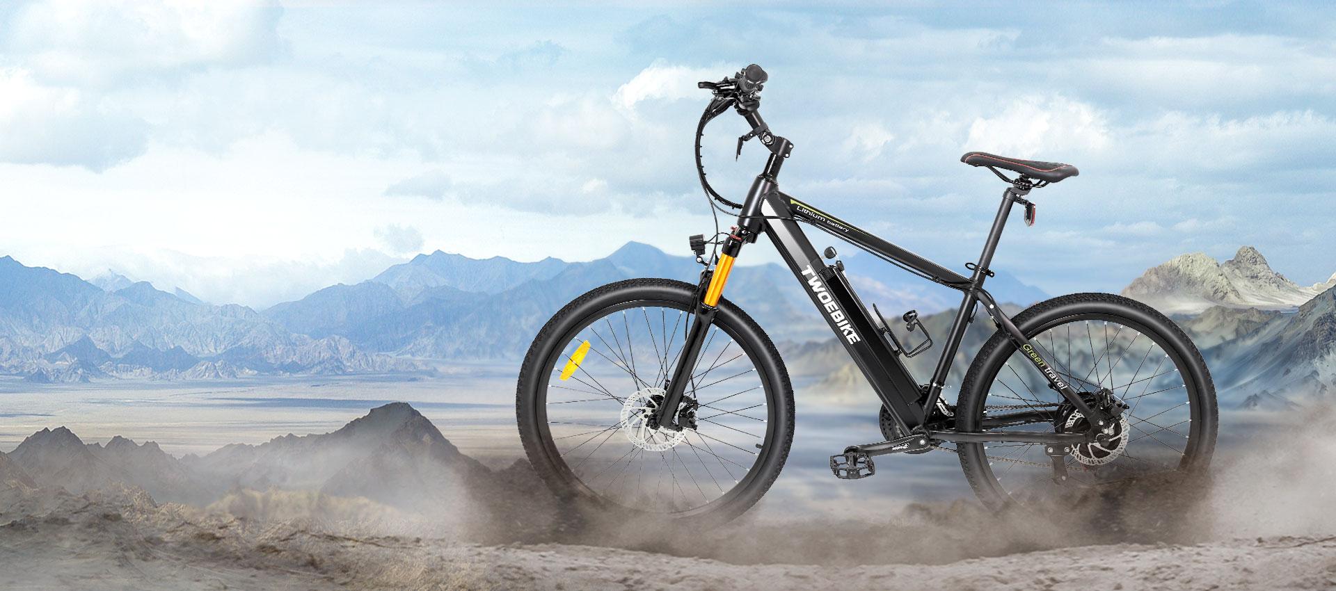 Bafang motor e-bike